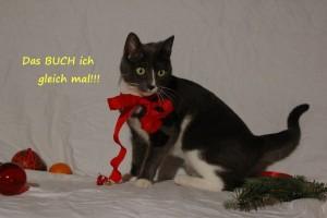 Facebook-Veranstaltungsfoto_Weihnachtsschmökerei_BUCHichgleich